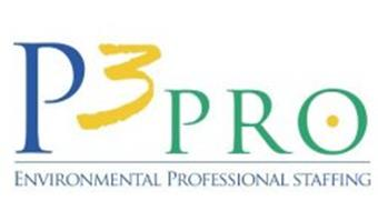 P3 PRO ENVIRONMENTAL PROFESSIONAL STAFFING