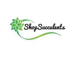 SHOP SUCCULENTS