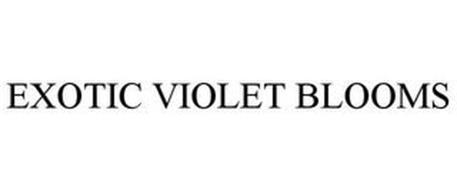 EXOTIC VIOLET BLOOMS