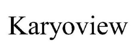 KARYOVIEW
