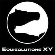 EQUISOLUTIONS XY