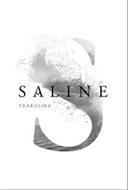 S SALINE TXAKOLINA