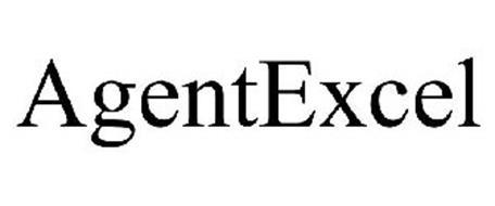 AGENTEXCEL