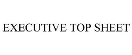EXECUTIVE TOP SHEET