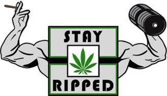 STAY RIPPED