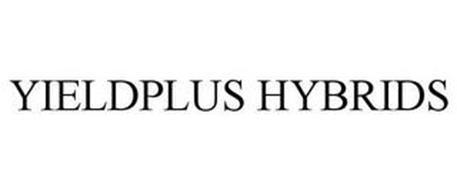 YIELDPLUS HYBRIDS