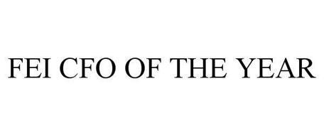 FEI CFO OF THE YEAR
