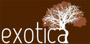 exotica trademark of floor and decor outlets of america
