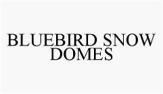 BLUEBIRD SNOW DOMES