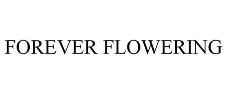 FOREVER FLOWERING