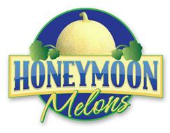 HONEYMOON MELONS