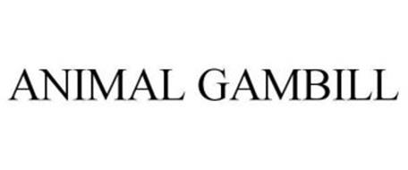 ANIMAL GAMBILL