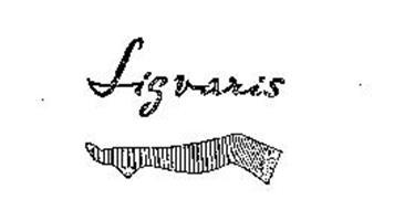LIGVARIS