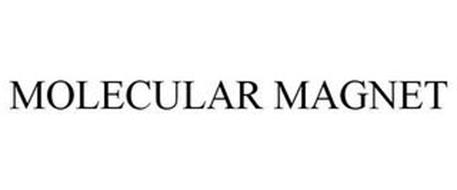 MOLECULAR MAGNET