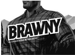 BRAWNY THE STRENGTH TO TAKE ON TOUGH MESSES