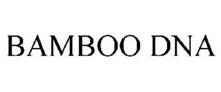 BAMBOO DNA