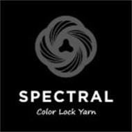 SPECTRAL COLOR LOCK YARN