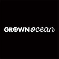 GROWN OCEAN