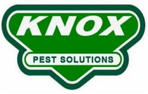 KNOX PEST SOLUTIONS