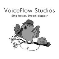 VOICEFLOW STUDIOS SING BETTER. DREAM BIGGER.