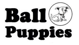 BALL PUPPIES SAY CHIZ