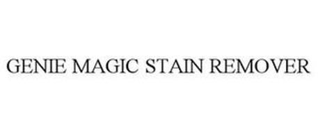 GENIE MAGIC STAIN REMOVER