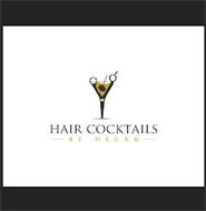 HAIR COCKTAILS BY MEGAN