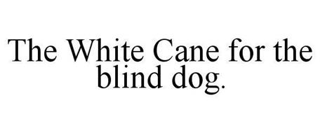 THE WHITE CANE FOR THE BLIND DOG.