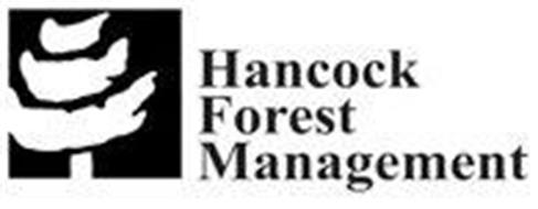 HANCOCK FOREST MANAGEMENT