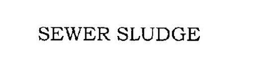 SEWER SLUDGE