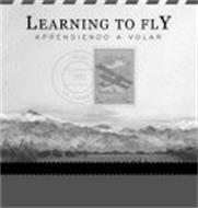 LEARNING TO FLY APRENDIENDO A VOLAR LAGUNA DEL DIAMANTE 1930 POSTA AEREA 20 CENTAVOS 20