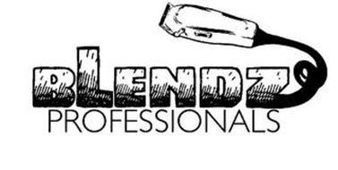 BLENDZ PROFESSIONALS