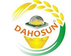 DAHOSUN