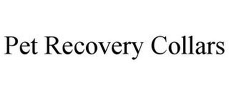 PET RECOVERY COLLARS
