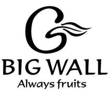 BIG WALL ALWAYS FRUITS