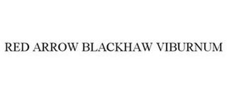 RED ARROW BLACKHAW VIBURNUM