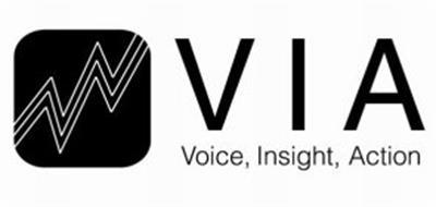 VIA VOICE, INSIGHT, ACTION