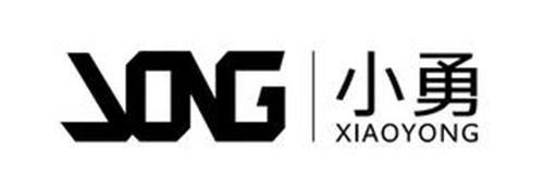 XIAOYONG VONG