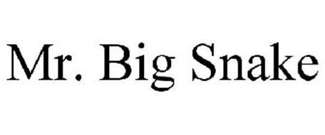 MR. BIG SNAKE