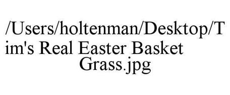 /USERS/HOLTENMAN/DESKTOP/TIM'S REAL EASTER BASKET GRASS.JPG