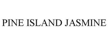 PINE ISLAND JASMINE