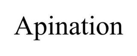 APINATION
