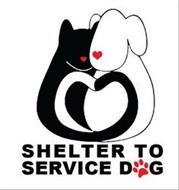 SHELTER TO SERVICE DOG