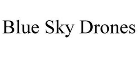 BLUE SKY DRONES