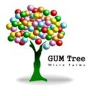 GUM TREE MICRO FARMS