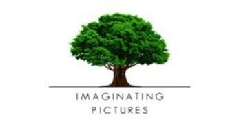 IMAGINATING PICTURES