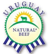 URUGUAY NATURAL* BEEF