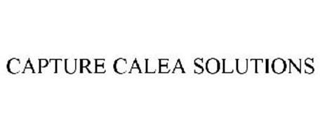 CAPTURE CALEA SOLUTIONS