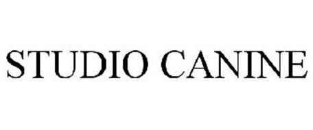 STUDIO CANINE