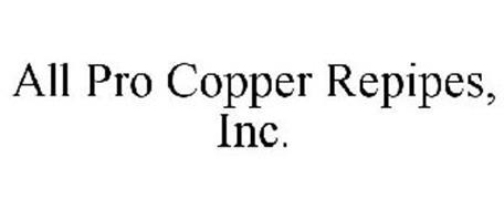 ALL PRO COPPER REPIPES, INC.